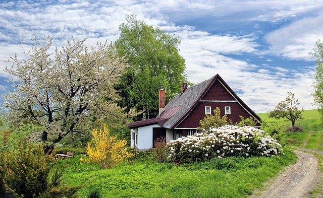 domy z ogrodem